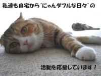 IMG_6330a.JPG